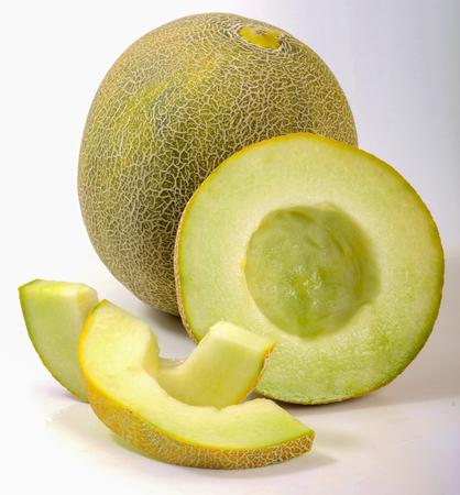 Melon Galia 版權商用圖片