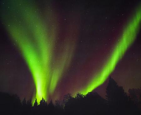 Aurora Reklamní fotografie