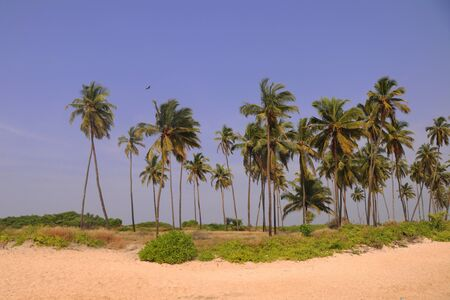 At beautiful beach side, udupi, karnataka. Stock Photo - 92654985