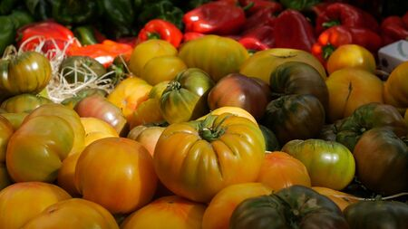 Yellow Tomato display at market. Close up 스톡 콘텐츠