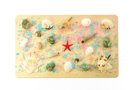 Colored seashells laid out on a wooden board on a white background photo