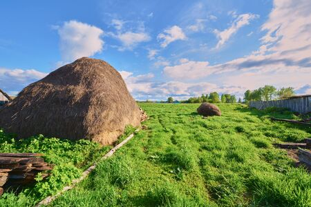 haystack: Haystack on the green grass in the spring