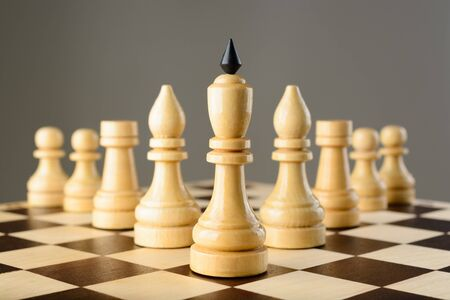 chessmen: Chessmen King, elephants, rooks and pawns are wedge on the chessboard