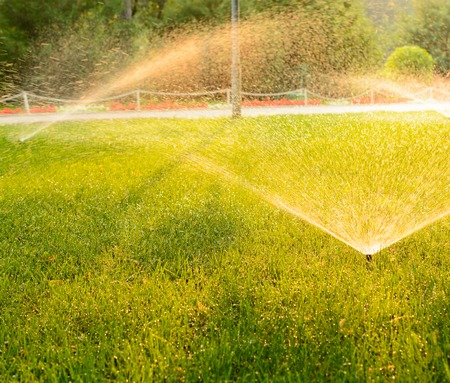 irrigate: Sprays irrigate the green lawn in the city park Stock Photo