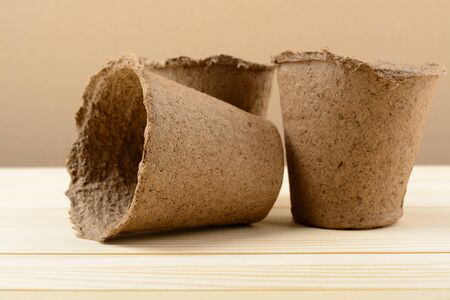 peat: Peat pots for seedlings on a wooden background Stock Photo