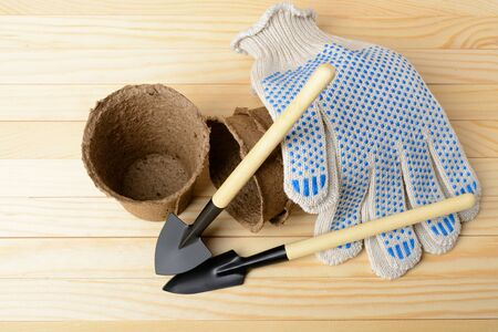 Garden tools for planting on a wooden table Stock Photo