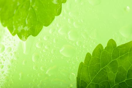 Mint leaves in the lemonade: macro Stock Photo