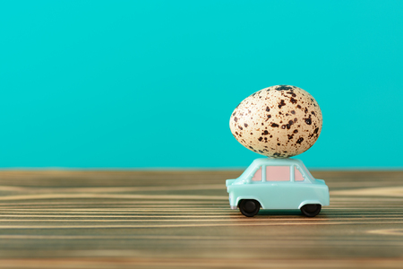 Quail egg on small car