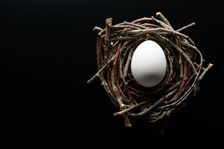 Easter background. White chicken egg in the nest of twigs on a black background