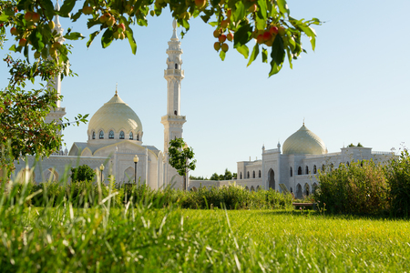 Branches of nice tree and green grass against beautiful white mosque on wonderful sunny day 免版税图像