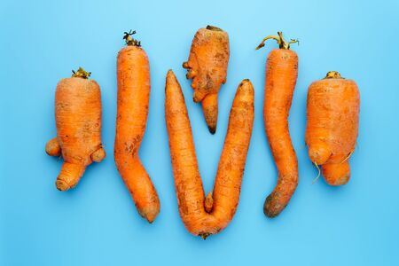 A few ugly carrots in the center of a blue background. Horizontal orientation, top view.