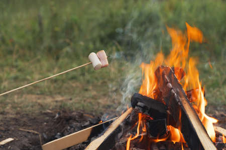 Roasting marshmallows on a campfire during camping in nature. Marshmallows on sticks over a bonfire. Space for text, horizontal orientation.