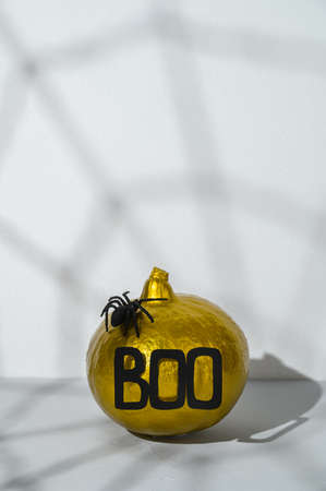 Halloween decorations. Painted golden pumpkin with word Boo and spider with spider webs shadow on gray background. Copy space, vertical orientation.