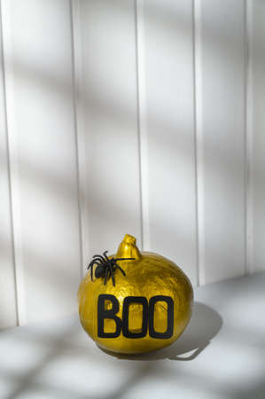 Halloween decorations. A painted golden pumpkin with the word Boo and a spider on a white wooden wall background. Abstract shadow, isometric style. Copy space, vertical orientation.