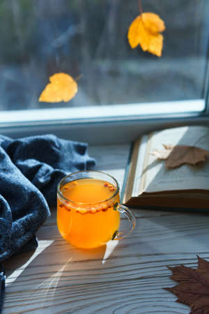 Hot warming healthy drink with sea buckthorn berries. Glass cup with berry tea on the windowsill on an autumn sunny day. Copy space, vertical orientation.