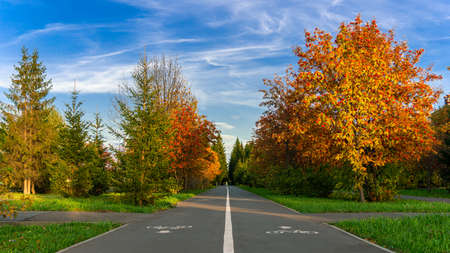 Bike path in a picturesque urban park. Sunny autumn day.