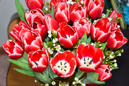 huge: Huge bouquet of red tulips Stock Photo