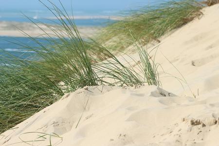 Dune of pyla Banque d'images - 87942684