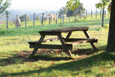 picnic table and cows in the Basque country Banque d'images - 87943824
