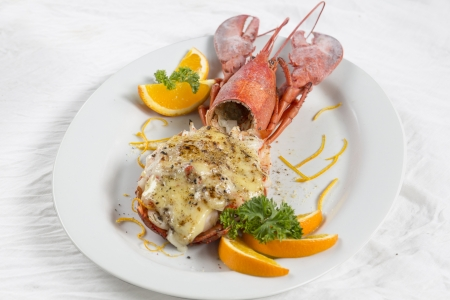 Baked lobster with cheese, macro closeup for design work photo