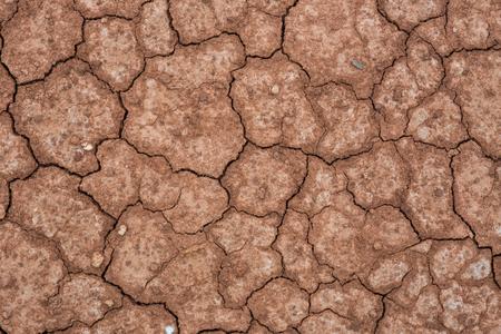 nieużytki: Cracked and barren ground Zdjęcie Seryjne