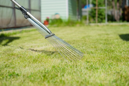 On the green lawn rake collect grass clipping Stock Photo