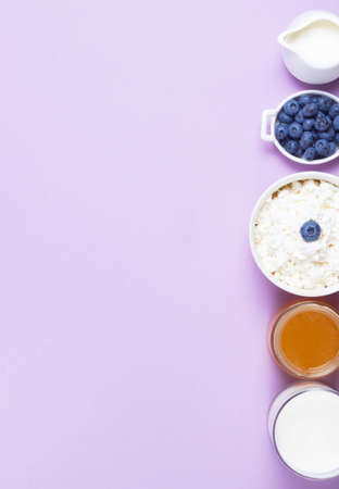 Cream, blueberries, cottage cheese, milk and honey on a pink background copy space Zdjęcie Seryjne