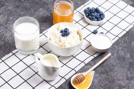 Cottage cheese with blueberries, sour cream and honey on a gray napkin Zdjęcie Seryjne