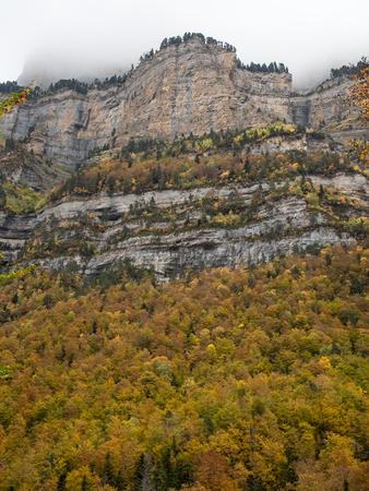 ordesa: Beautiful forest in autumn under a foggy mountain in Ordesa National Park (Spain) Stock Photo