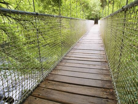 prespective: Suspension bridge in the forest. This bridge is located in the natural park