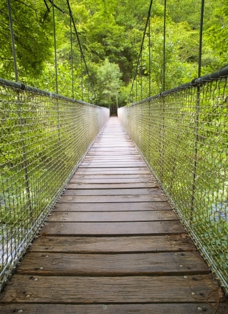 Suspension bridge in the forest. This bridge is located in the natural park  photo