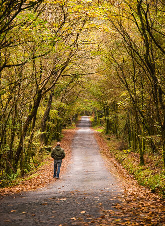 Man walking along a road in the forest in autumn  This landscape is located in the natural park called Fragas do Eume  photo