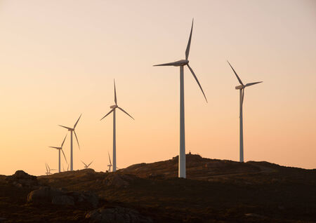 Wind turbines in a landscape at sunset photo
