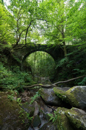 old bridge: Old stone bridge hidden in the forest. This place is located in the Natural Park of Fragas do Eume
