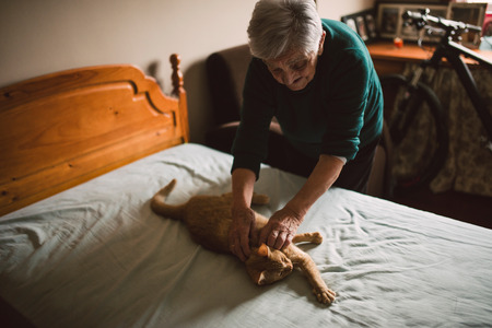 fondle: Elderly woman petting her cat on the bed at home Stock Photo