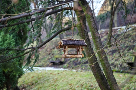 Birdhouse on a tree branch Banque d'images