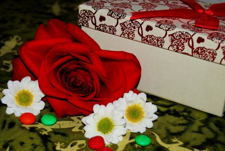 Red rose, white daisies and a gift Banque d'images