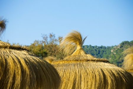 thatched roofs Banque d'images