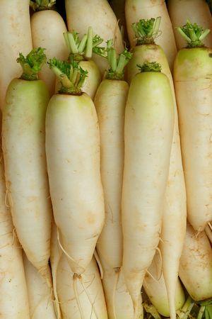 Daikon - Japanese radish is sold on the market                                Stock Photo