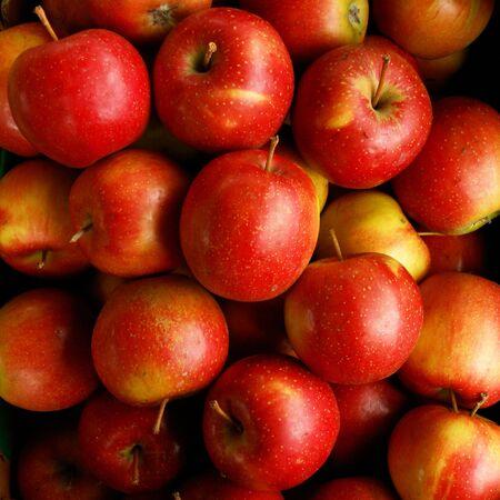 Apples Eliza for sale on the market
