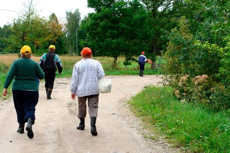 A group of people go into the woods for mushrooms                               Stock Photo - 7342429