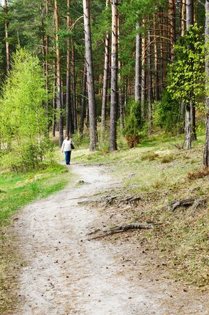 Woman walking purposefully through beautiful, sunlit forest