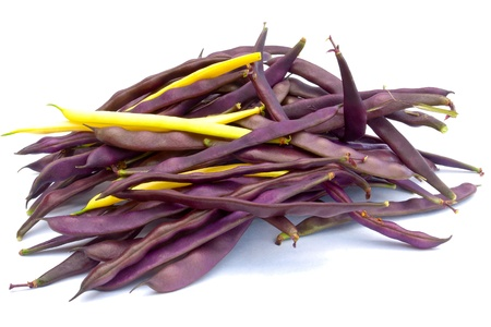 Pile of purple and yellow  string beans isolated on white photo