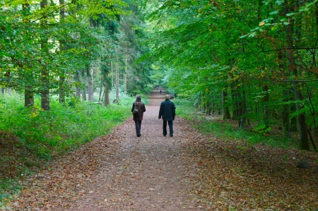 walk in the park: Mature couple walking in the autumn park