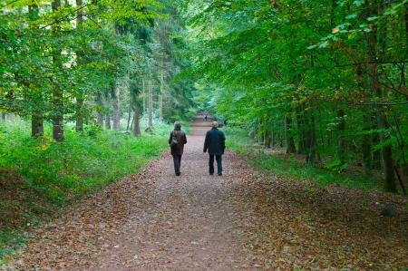 ancianos caminando: Pareja joven caminando en el parque de oto�o Foto de archivo