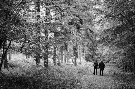 A couple of seniors walking in the park photo