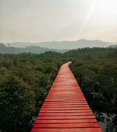 red wooden bridge among forest.
