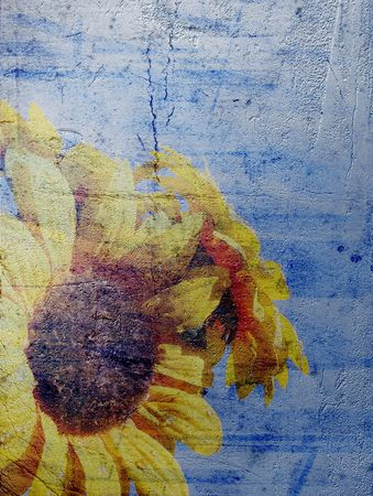 deteriorate: Grunged photo of a sunflower