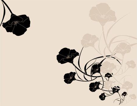 블랙 핑크 양귀비 배경