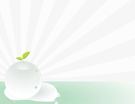 Clear sphere seedling background with copy space Stock Photo